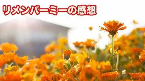 f:id:yuhei2261:20180321001630j:plain