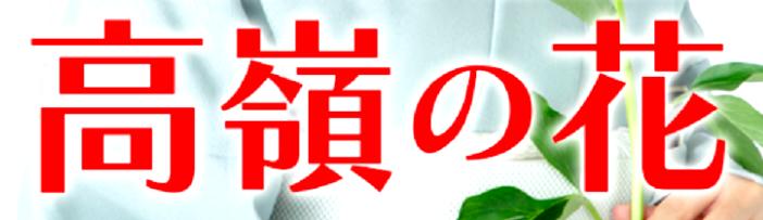 f:id:yuhei2261:20180912084815p:plain