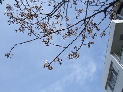 f:id:yuheipapa:20100322105934j:image