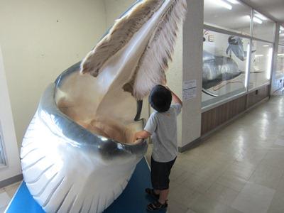 f:id:yuheipapa:20110801111238j:image