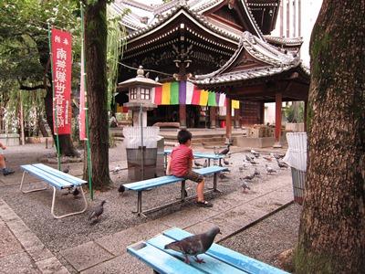 f:id:yuheipapa:20110821122259j:image