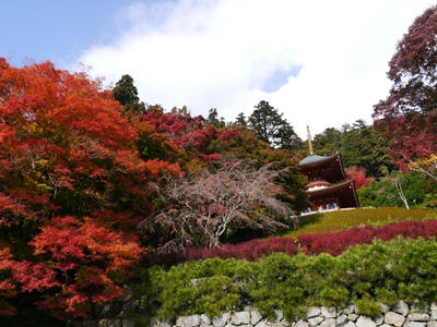 f:id:yuheipapa:20121121223713j:image