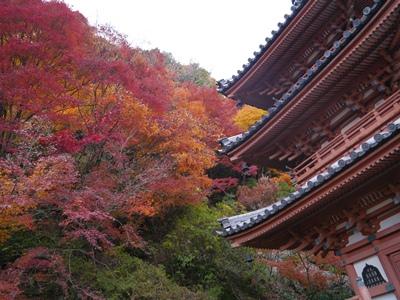 f:id:yuheipapa:20121210012908j:image