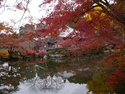 f:id:yuheipapa:20121210013232j:image