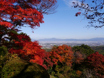 f:id:yuheipapa:20121210013526j:image