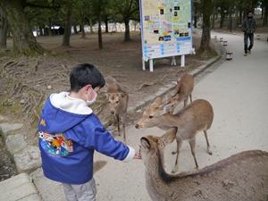 f:id:yuheipapa:20130216095955j:image:right