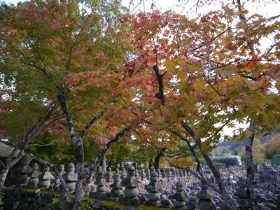 f:id:yuheipapa:20131202093524j:image