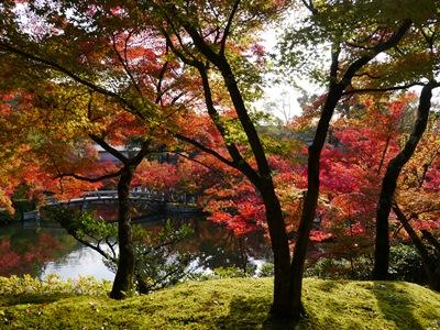 f:id:yuheipapa:20131202093959j:image