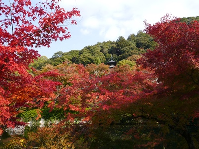 f:id:yuheipapa:20131202094000j:image