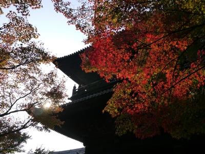 f:id:yuheipapa:20131202094243j:image