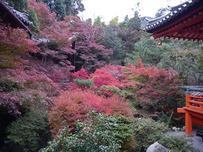 f:id:yuheipapa:20131202094244j:image