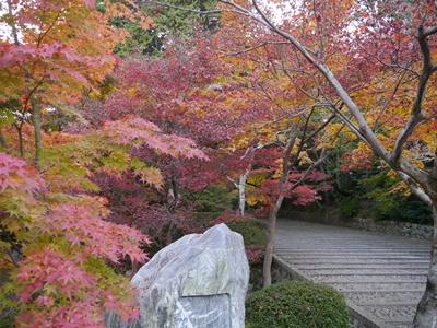 f:id:yuheipapa:20131202094246j:image