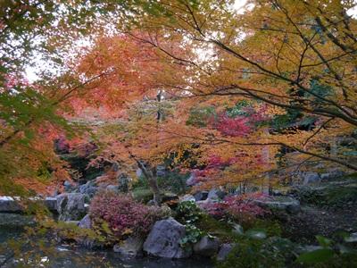 f:id:yuheipapa:20131202094248j:image