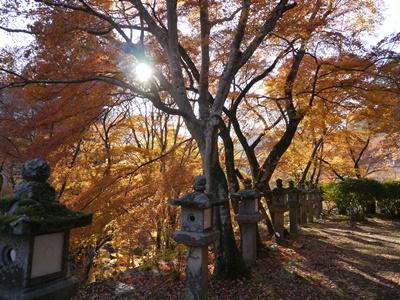 f:id:yuheipapa:20131202094722j:image