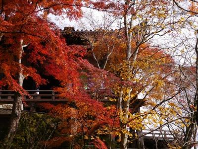 f:id:yuheipapa:20131202094724j:image