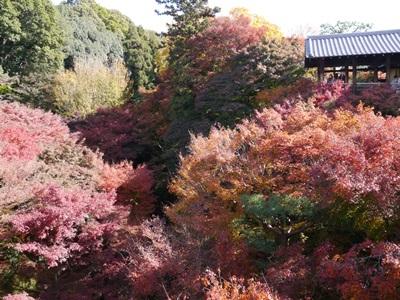 f:id:yuheipapa:20131202142919j:image