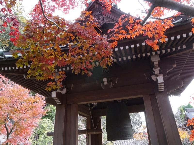 f:id:yuheipapa:20151229231627j:image:w360
