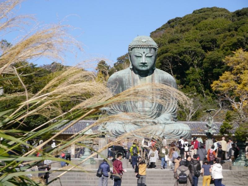 f:id:yuheipapa:20151229231628j:image:w360