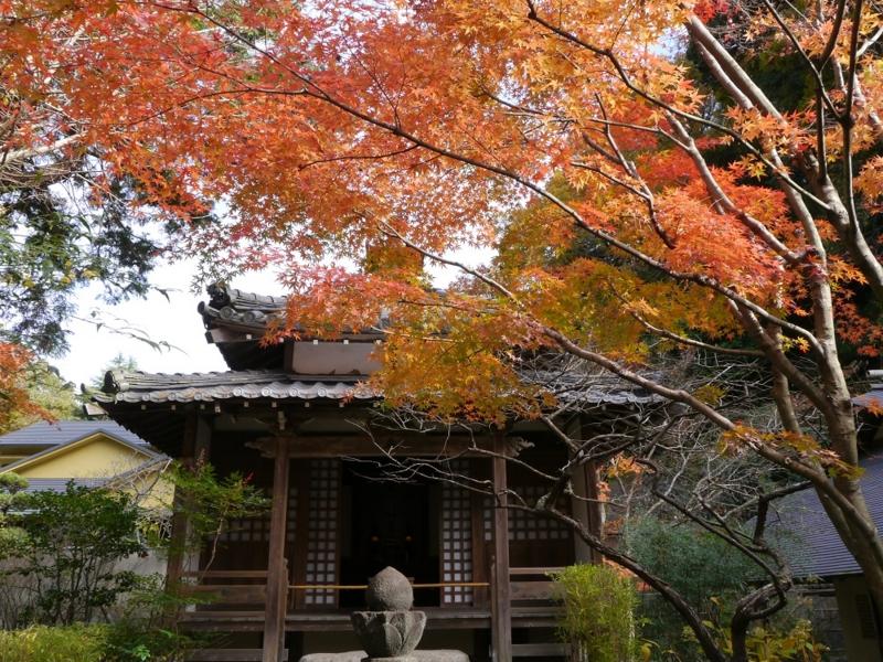 f:id:yuheipapa:20151230222146j:image:w360