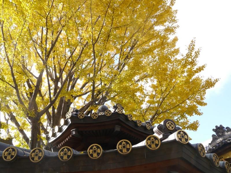 f:id:yuheipapa:20151230230545j:image:w360
