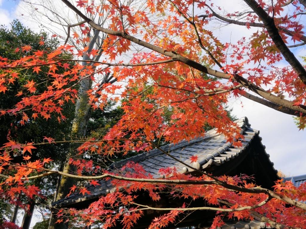 f:id:yuheipapa:20171119191311j:plain