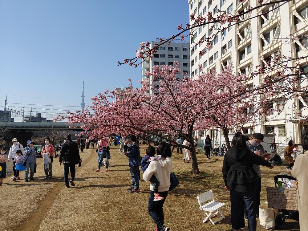 f:id:yuheipapa:20210506004031j:plain