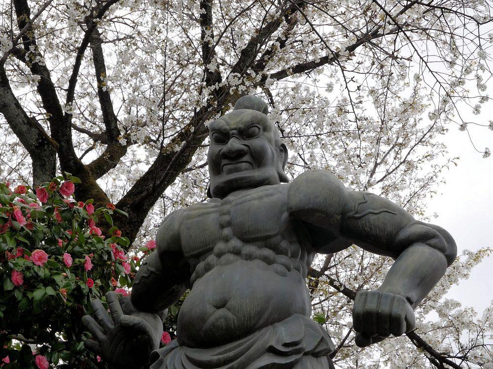 f:id:yuheipapa:20210508231528j:plain