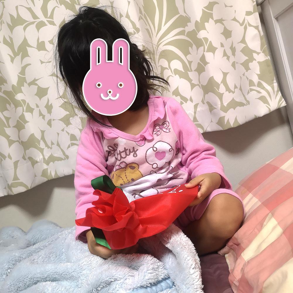 f:id:yuhina:20181225073528j:image:w400