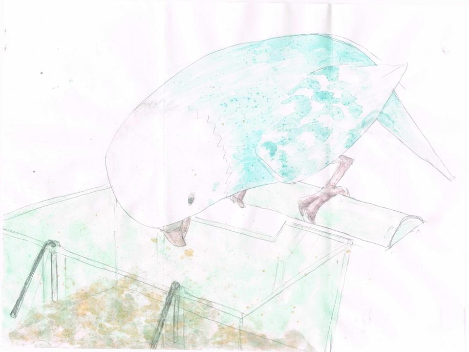f:id:yui-iwamoto:20200129114226j:plain