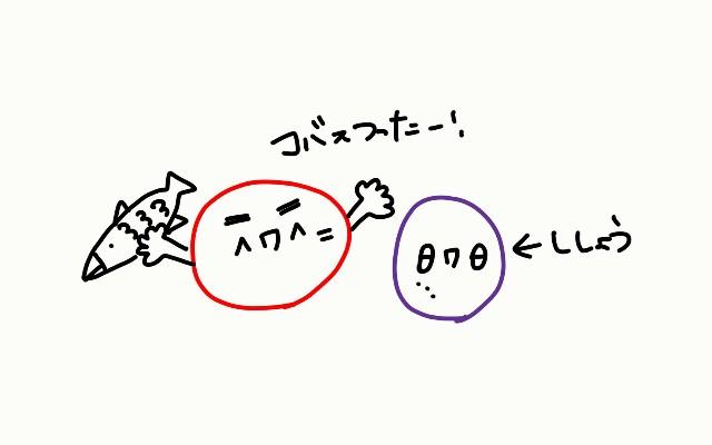 f:id:yui162_hyphen:20171203081454j:image