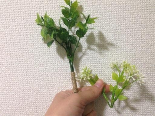 f:id:yui621126iuy:20171022195842j:image