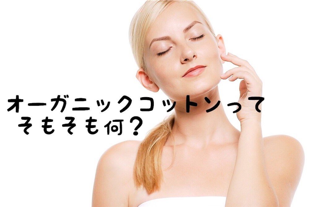 f:id:yuichi0519:20191019195118j:image