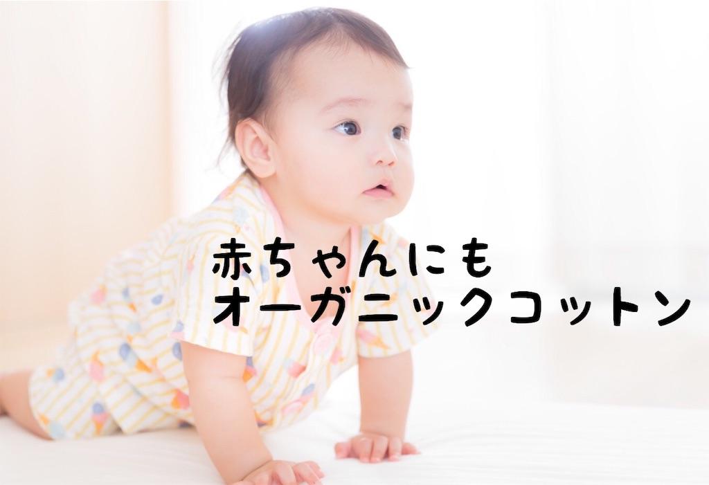 f:id:yuichi0519:20191019195241j:image