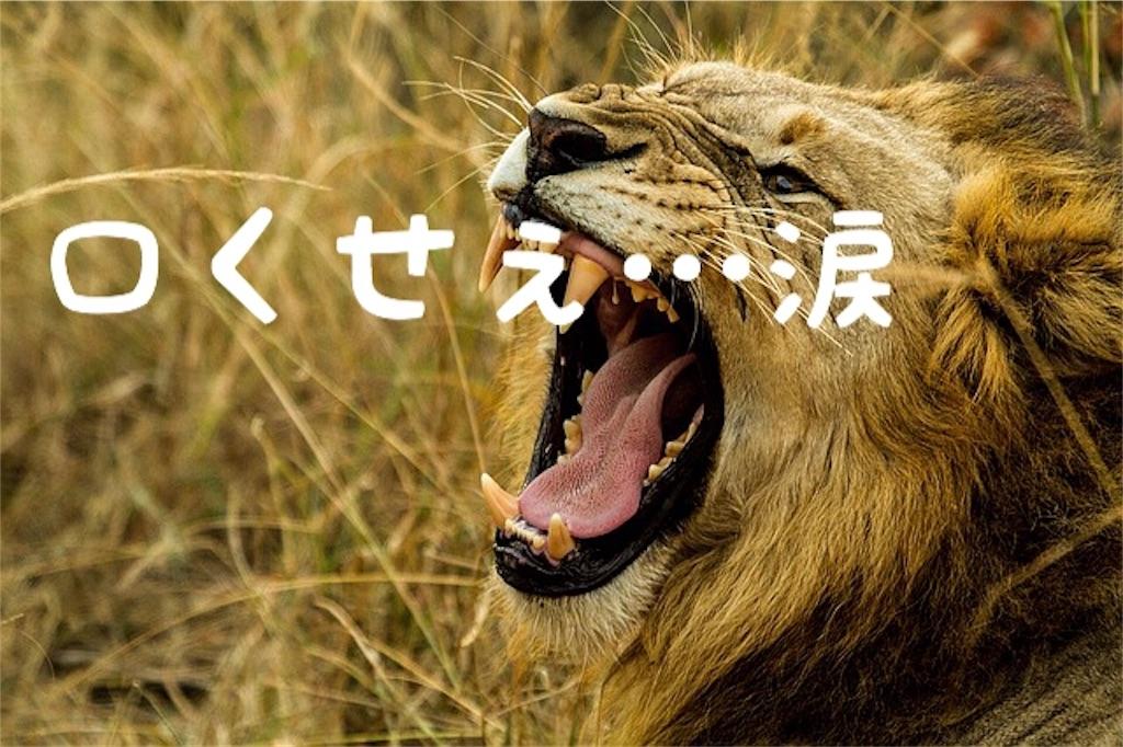 f:id:yuichi0519:20191026131749j:image