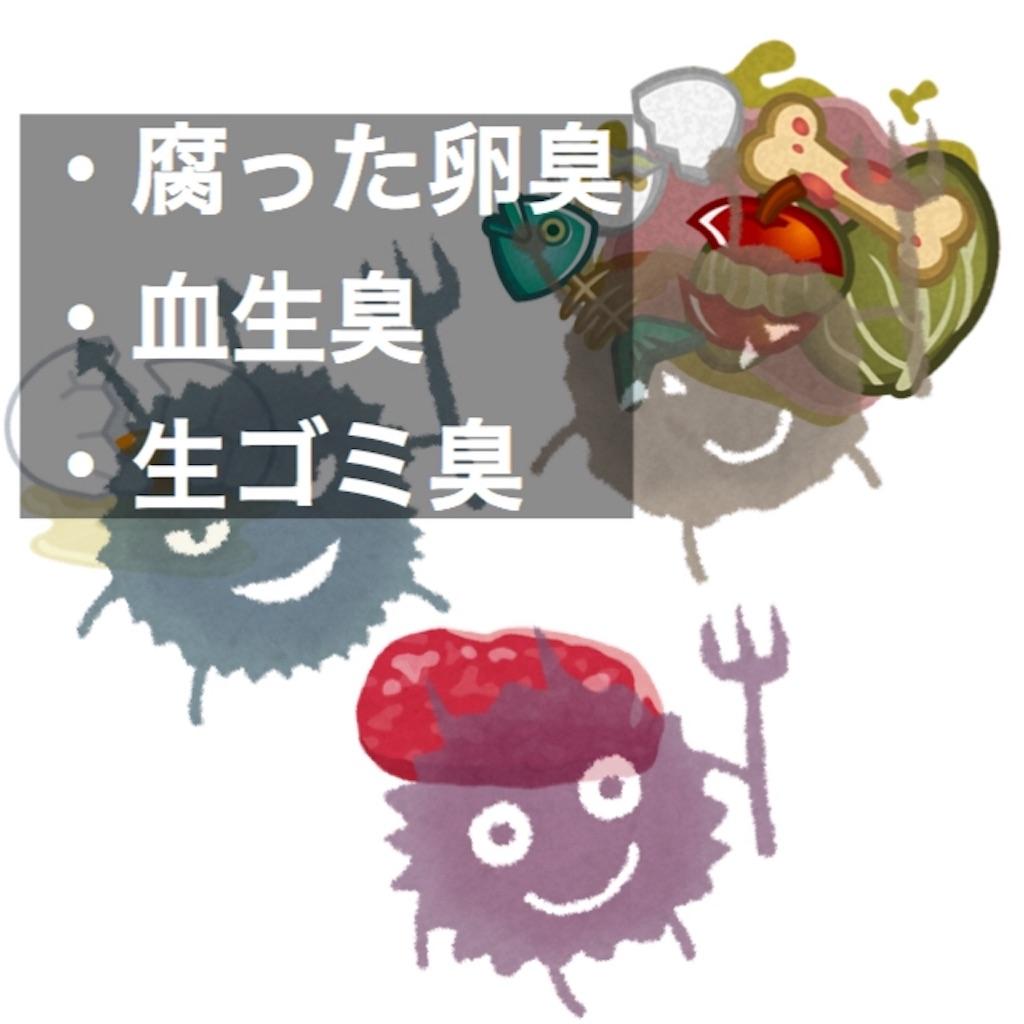 f:id:yuichi0519:20191029220831j:image