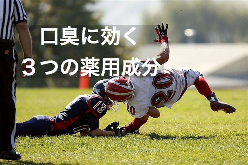 f:id:yuichi0519:20191102161456j:image
