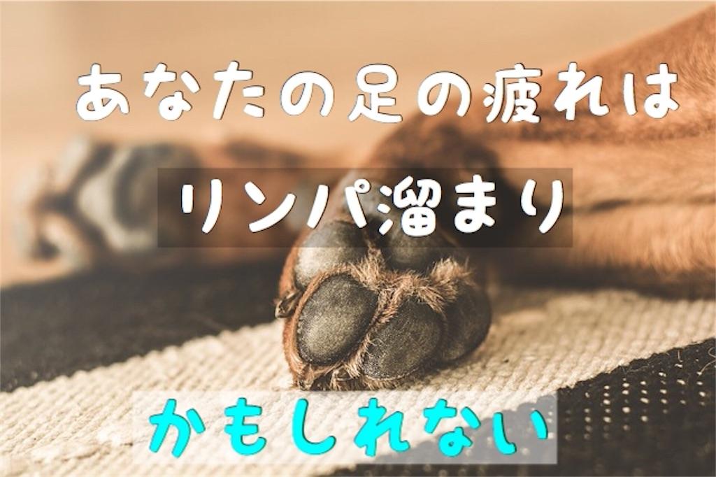 f:id:yuichi0519:20191107214424j:image