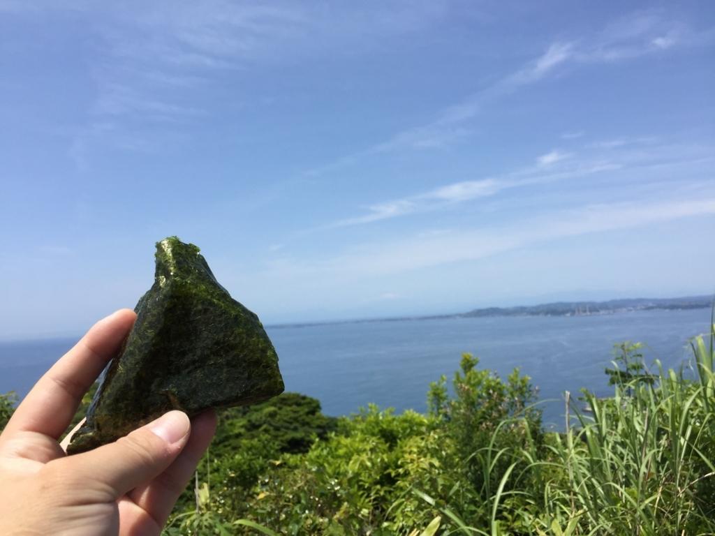 f:id:yuichi44:20170604120442j:plain