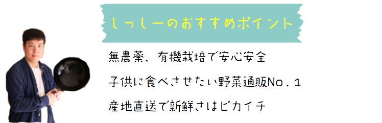 f:id:yuichi44:20170609150907p:plain