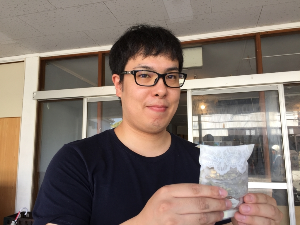 f:id:yuichi44:20170617165301j:plain
