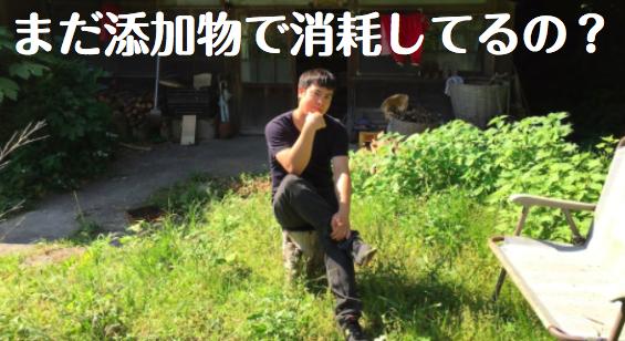 f:id:yuichi44:20170620221451p:plain