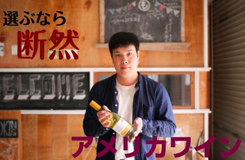 f:id:yuichi44:20170714090358p:plain