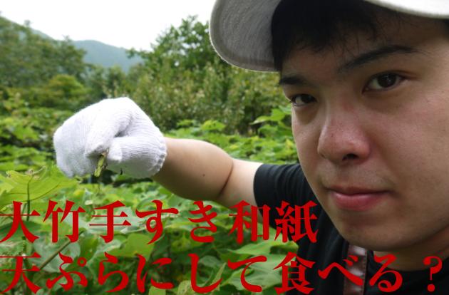f:id:yuichi44:20170730175546p:plain