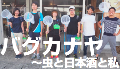 f:id:yuichi44:20170822203606p:plain