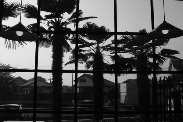 窓(モノクロver.)