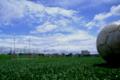 [サッカー][空]ボール