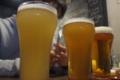 [ビール]金しゃち ヴァイツェン ブルーマスター かぼす&ハニー 横浜ビー