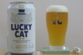 [ビール]LUCKY CAT