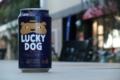 [ビール]黄桜 LUCKY DOG