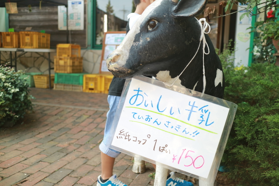 f:id:yuichi_alex:20180804144035j:plain